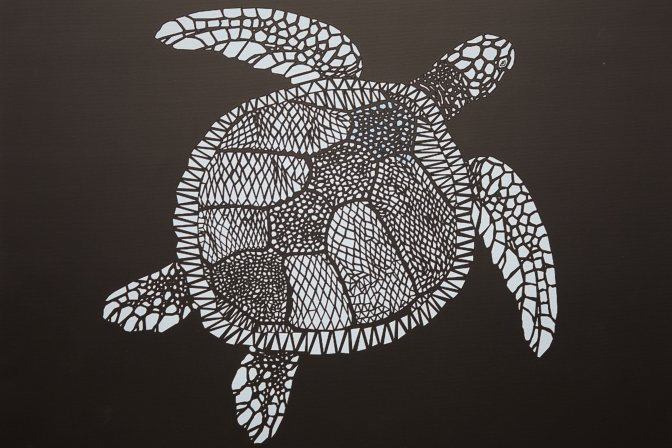 Black and white turtle painting.