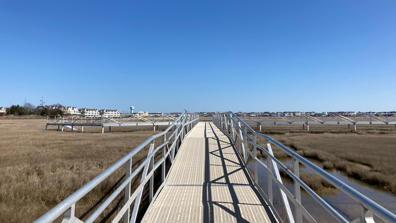 Metal boardwalk through marshland.