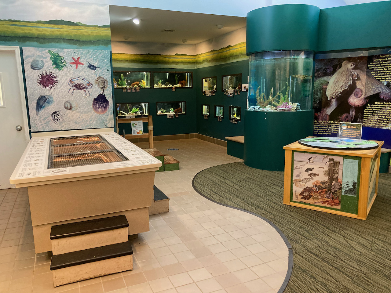 Interior of museum and aquarium.