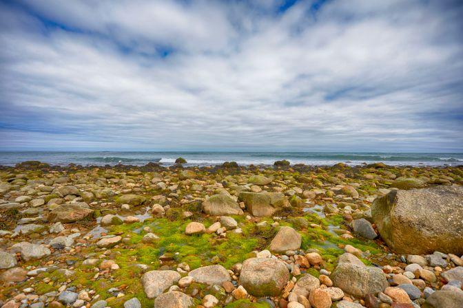 View of rocky shoreline.