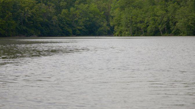 View of Lake Alloway.