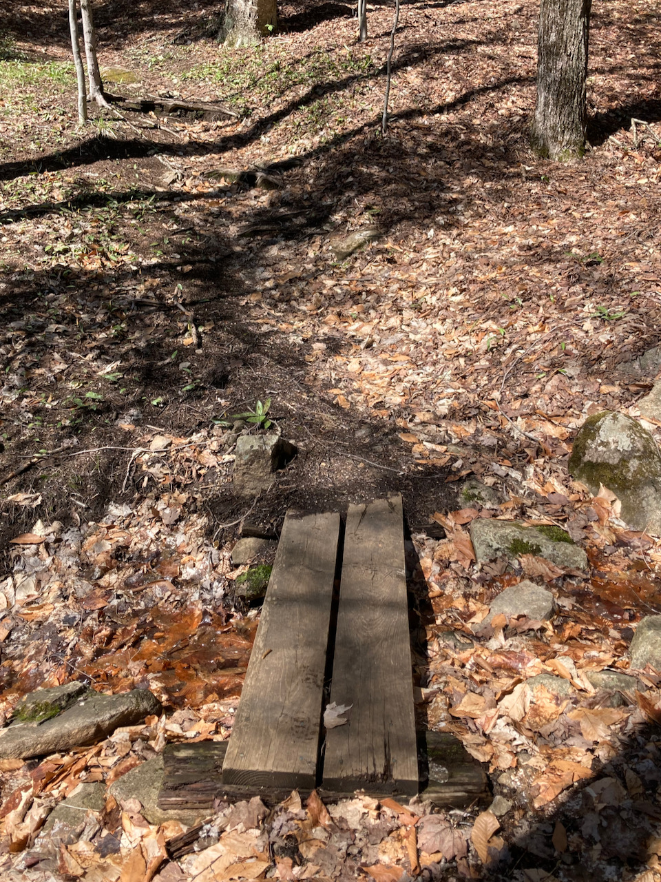 Small bridge over tiny stream in ground.