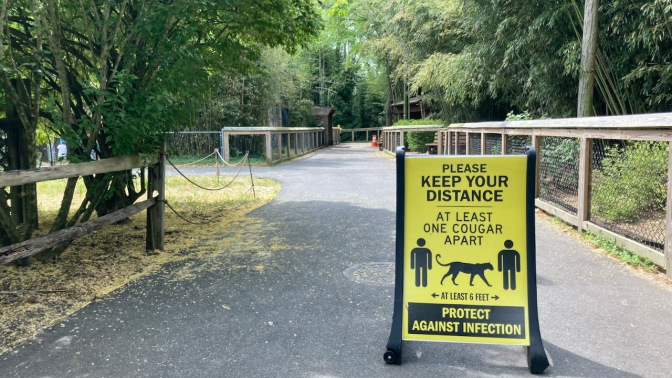 Path through zoo, with sign that says PLEASE KEEP YOUR DISTANCE AT LEAST ONE COUGAR APART