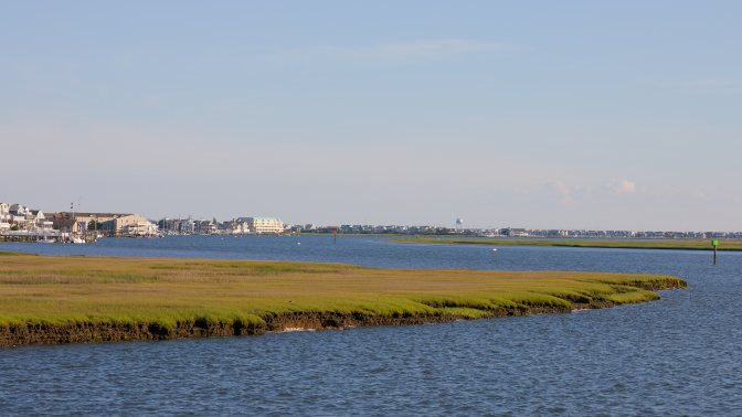 View of wetlands on bay side of Sea Isle City.