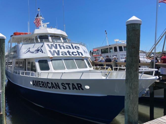 Passenger ship docked at pier.