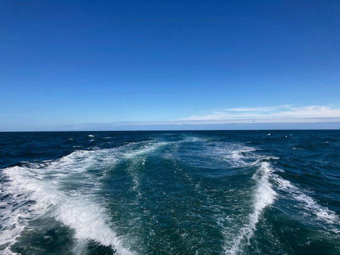 Rearward view of ocean from aft of boat.