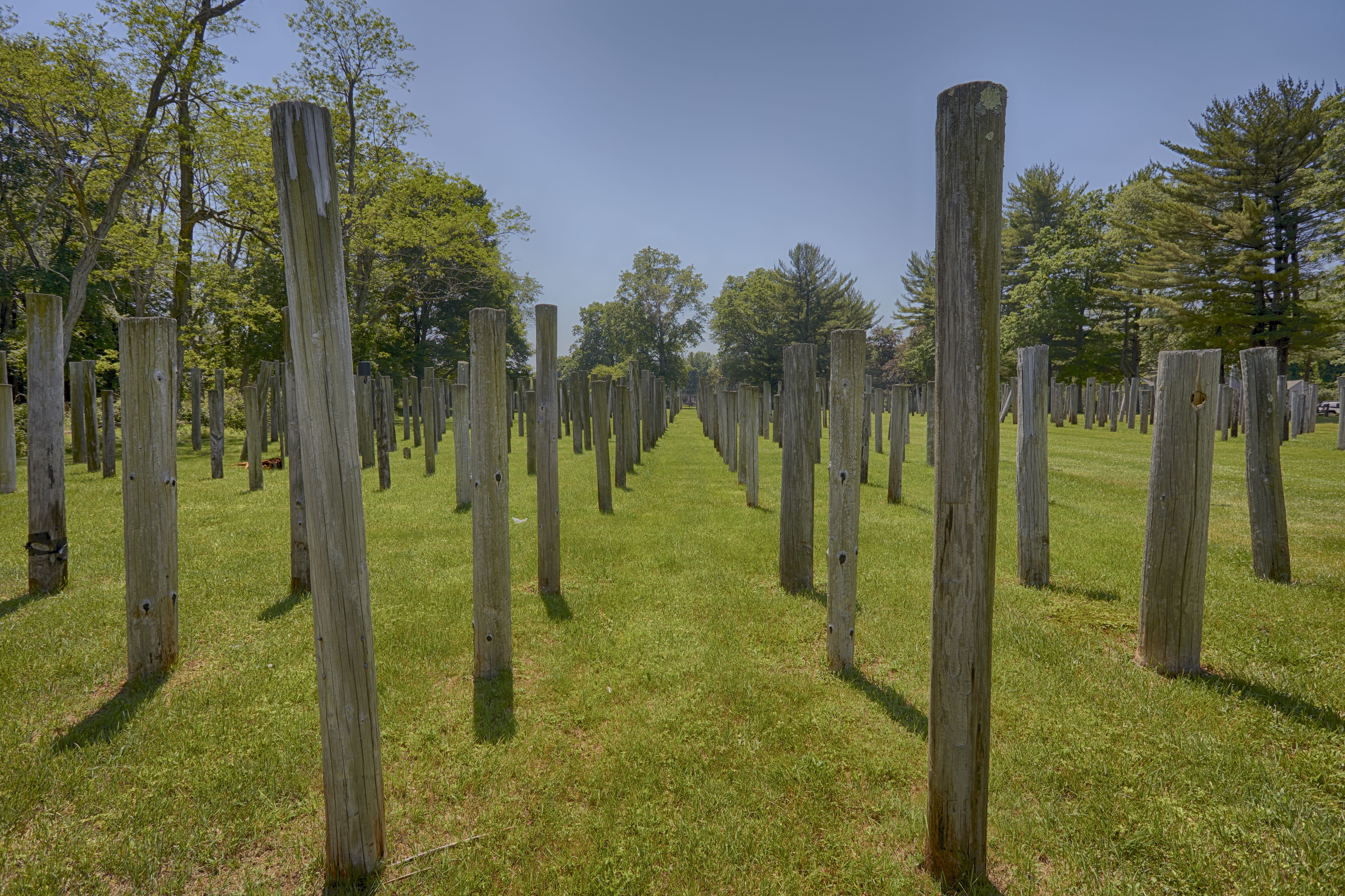 Rows of telephone poles.