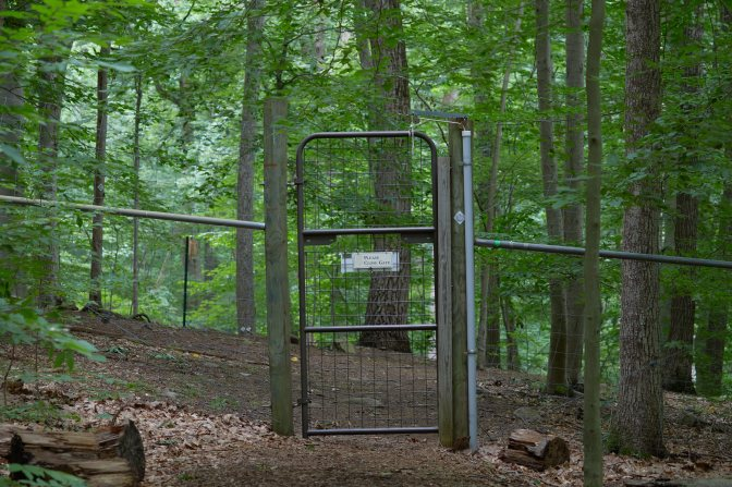 Gate and fence in forest. A sign on the gate says PLEASE CLOSE GATE.