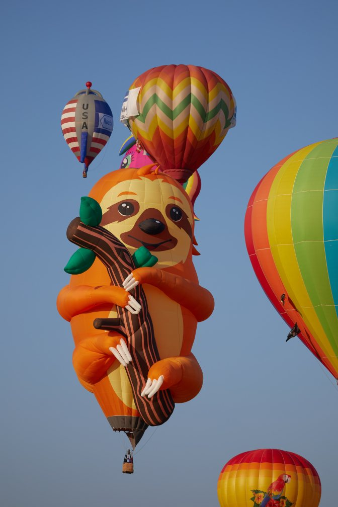 Sloth balloon, surrounded by other multicolored balloons.