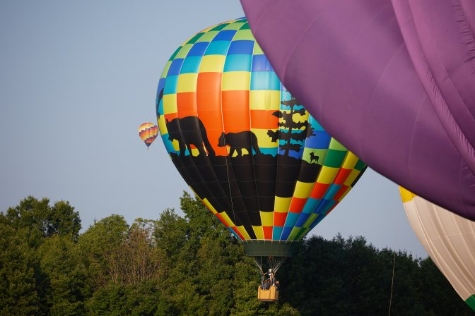 Balloon rising, covered in multicolored pattern, with silhouette of two bears walking.