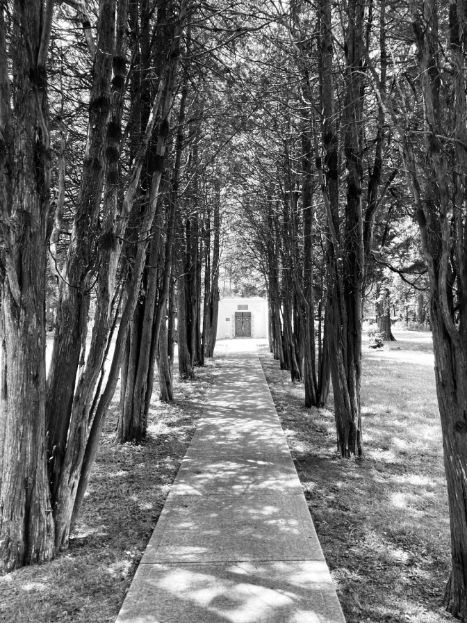 Tree-line path, leading to burial mound.