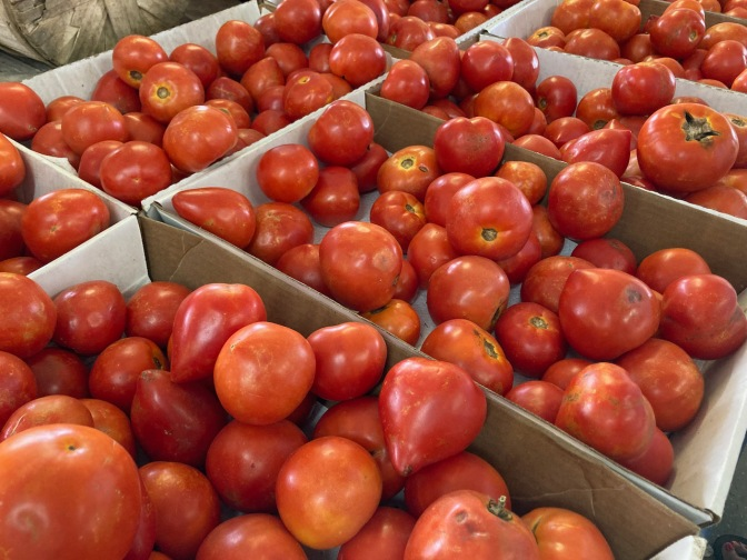 Jersey fresh tomatoes in baskets.