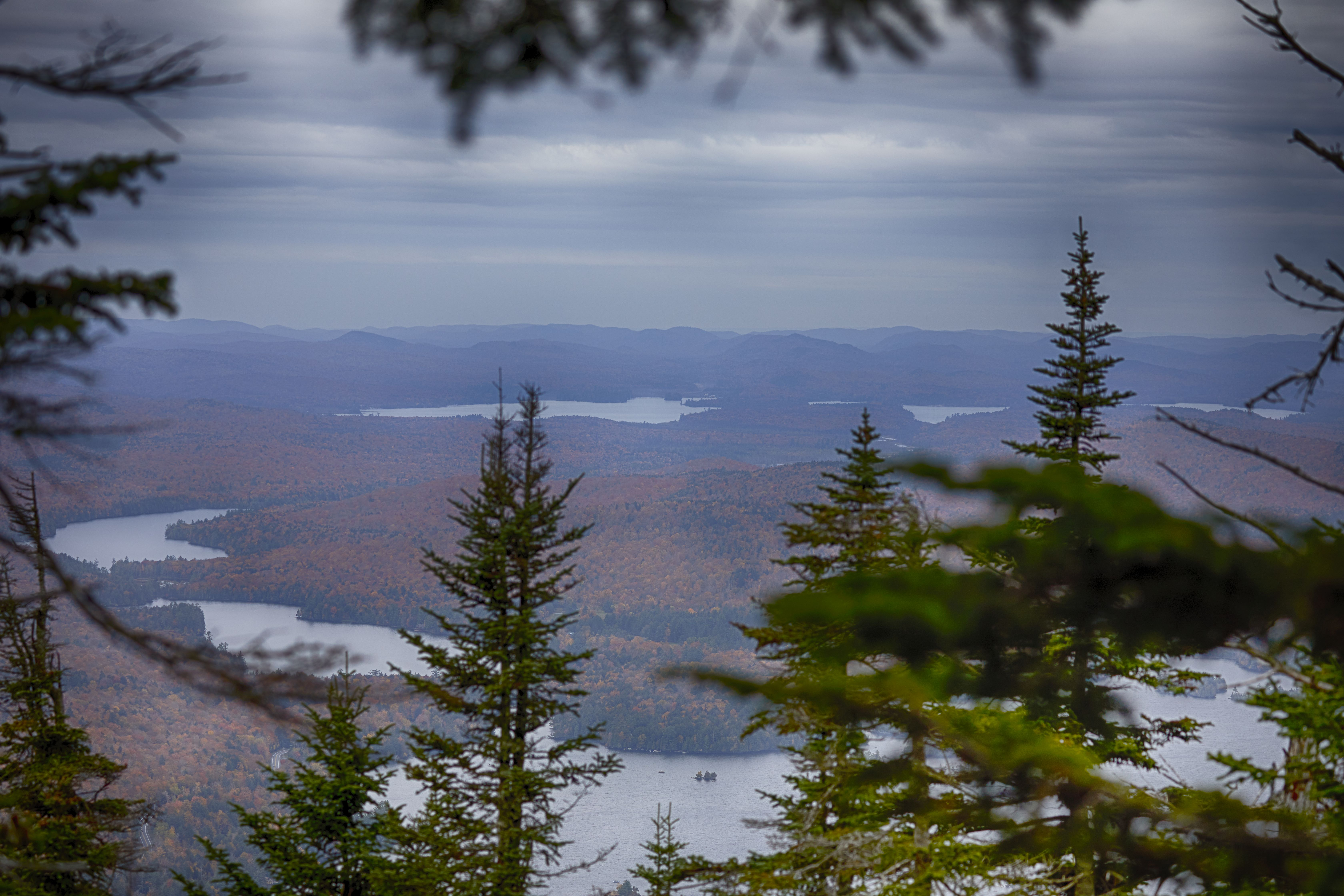 View of lakes and mountains in distance, through tree branches.