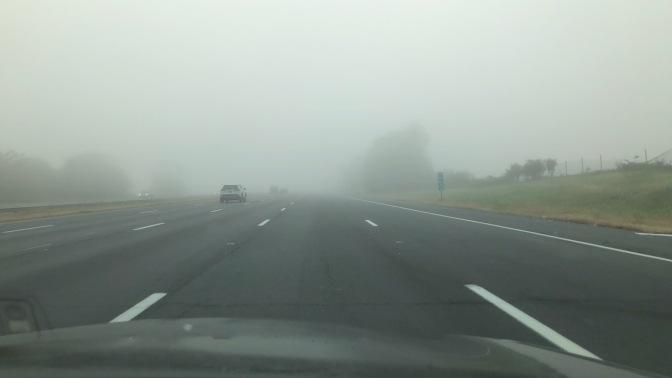 Garden State Parkway, through thick fog.