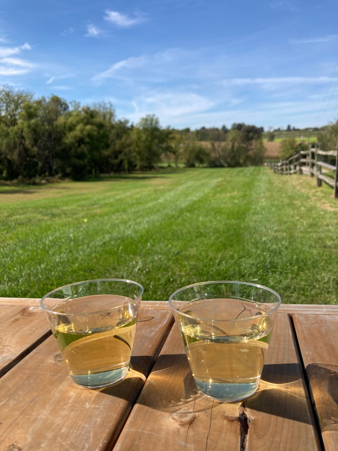Two glasses of wine on picnic table at Unionville Vineyards.