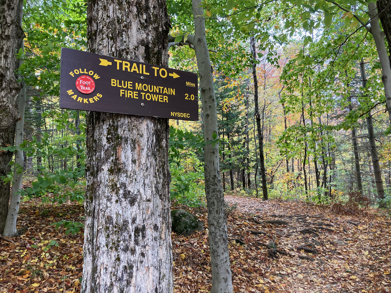 Trail marker that reads TRAIL TO BLUE MOUNTAIN FIRE TOWER 2.0 MILES.