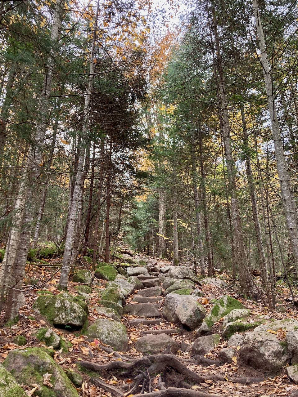 Rocky hillside, with steps carved into rockface.