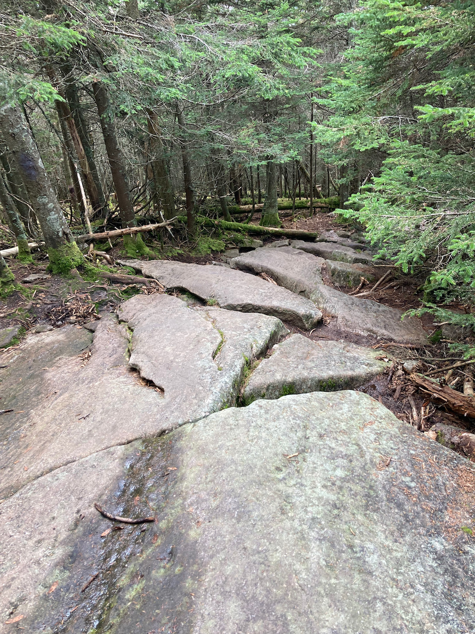 View of broken rocks along the trail, facing downhill.
